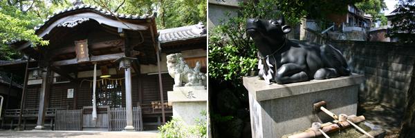 中言神社 / Nakagoto-jinja Shrine/ 中言神社/ 中言神社